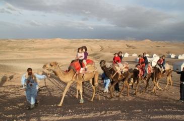 agafay-desert-trip-camel-riding
