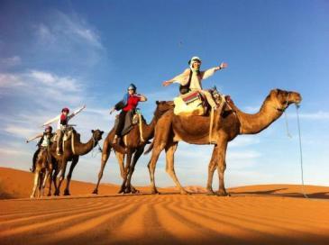 marrakech camel riding